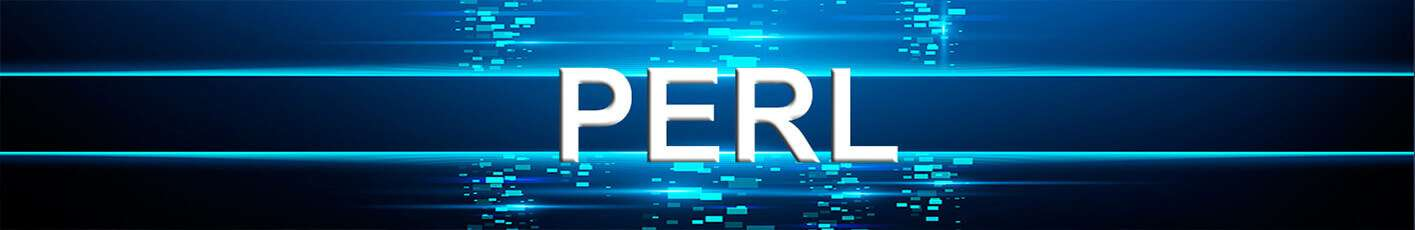 Perl Scripting Language